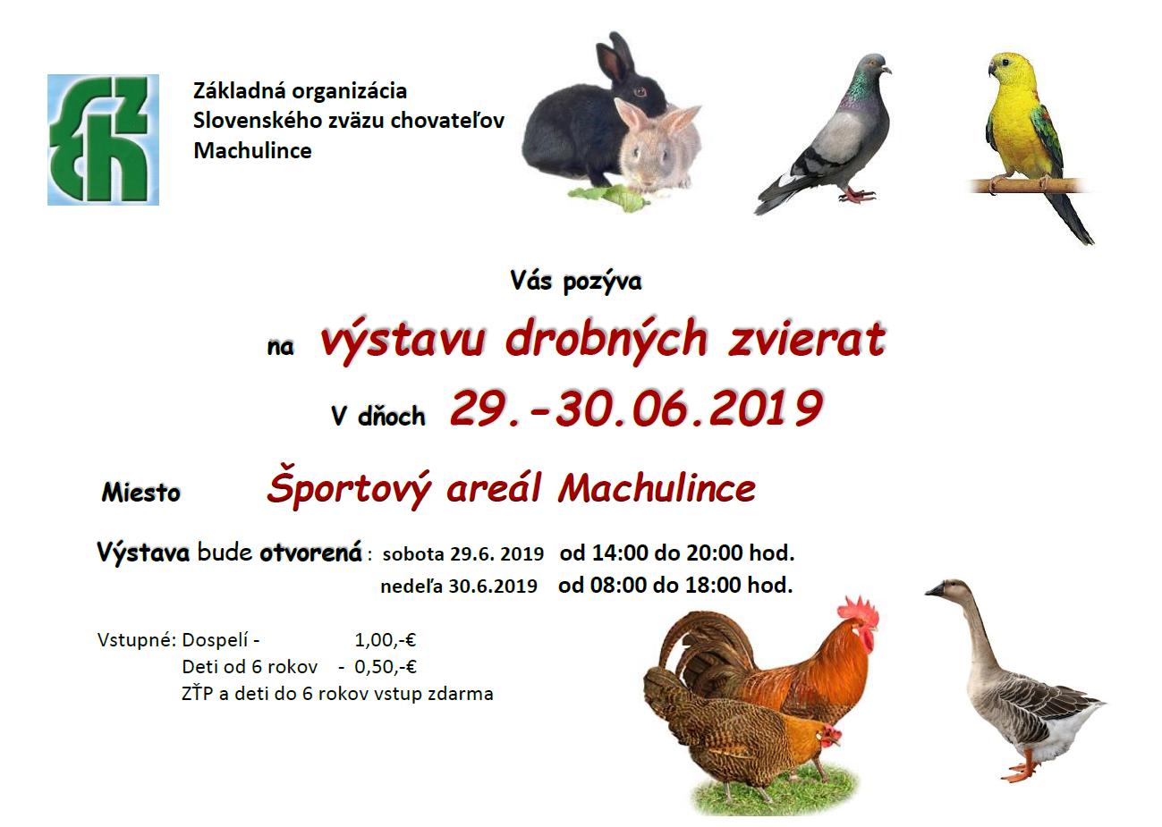 Výstava_zvierat_1